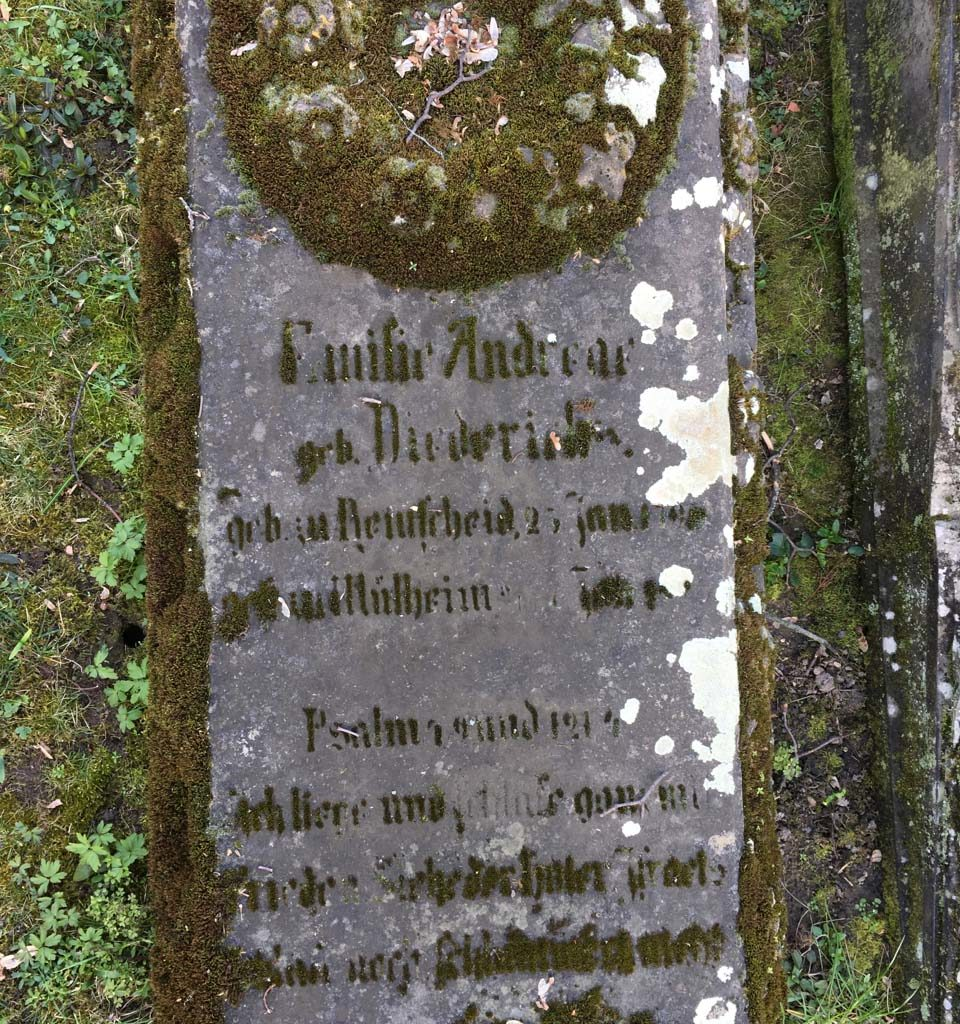andreae-evfriedhof-005